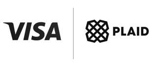 visa plaid logo